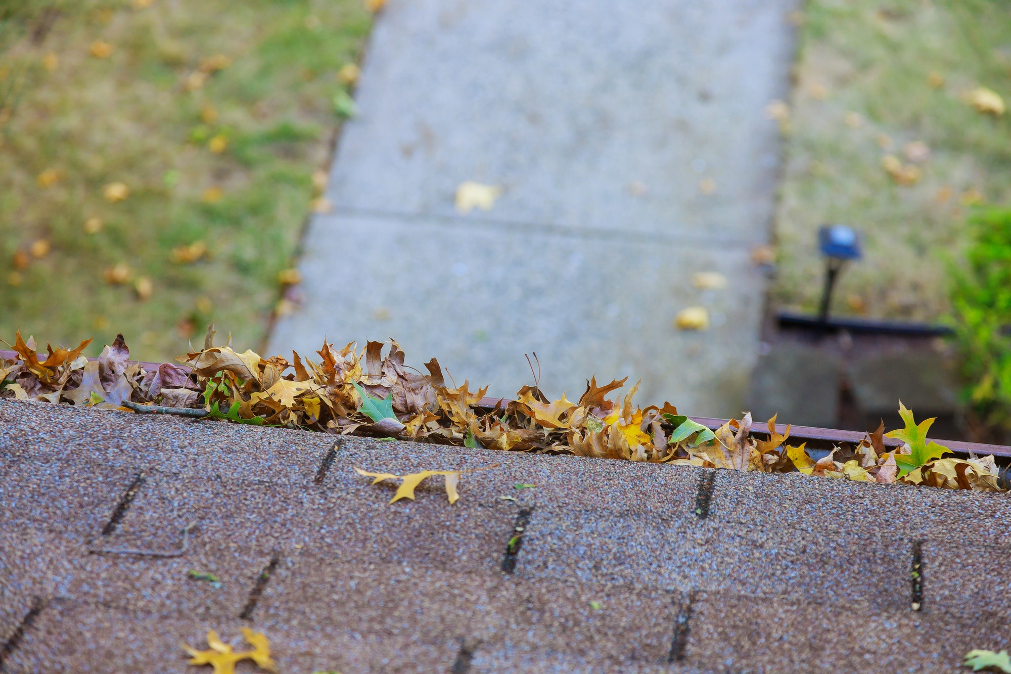Yellow leaves are covered with iron gutter cover on a roof with leaves